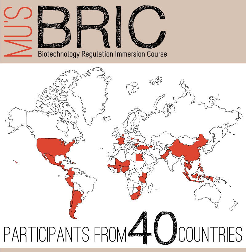 Updated-2014---Bric-Countries